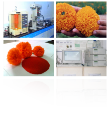 Click to Explore the Worldclass Katra Phytochemical Labs